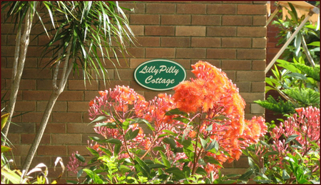 Lillypilly - Lennox Head Accommodation