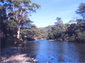 Douglas River Cabin - Lennox Head Accommodation