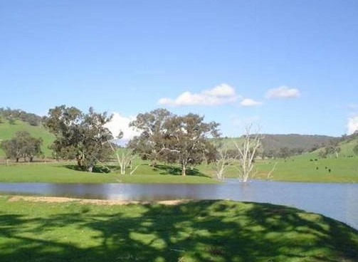 Hillview Farmstay - Lennox Head Accommodation