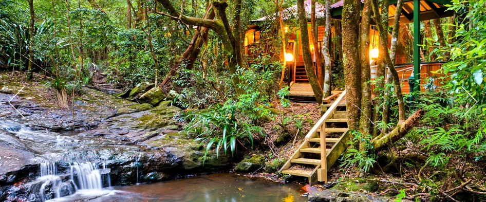 The Mouses House - Rainforest Retreat - Lennox Head Accommodation