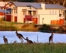 Grand Mercure The Vintage Hunter Valley - Lennox Head Accommodation