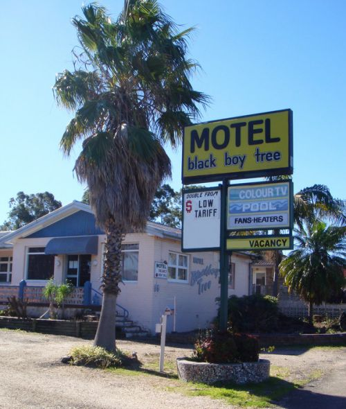 Blackboy Tree Motel - Lennox Head Accommodation