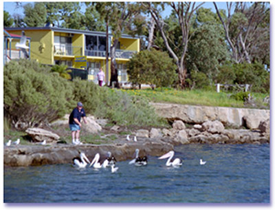Almonta Holiday Apartments - Lennox Head Accommodation