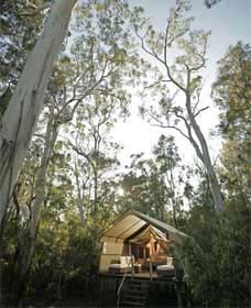 Paperbark Camp - Lennox Head Accommodation