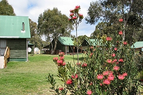Derwent Bridge Chalets  Studios - Lennox Head Accommodation