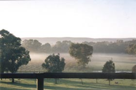 Settlers Rest Farmstay Swan Valley - Lennox Head Accommodation