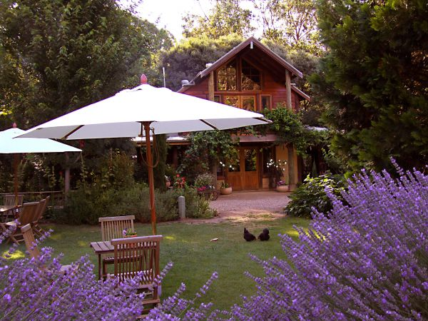 Lavender Hue - Lennox Head Accommodation