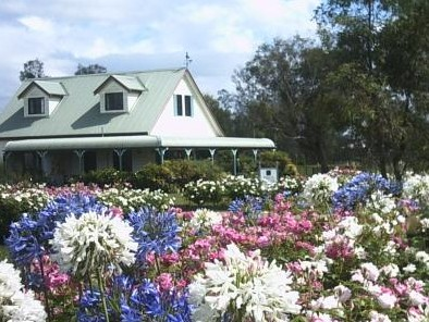 Emmas Cottage Vineyard - Lennox Head Accommodation