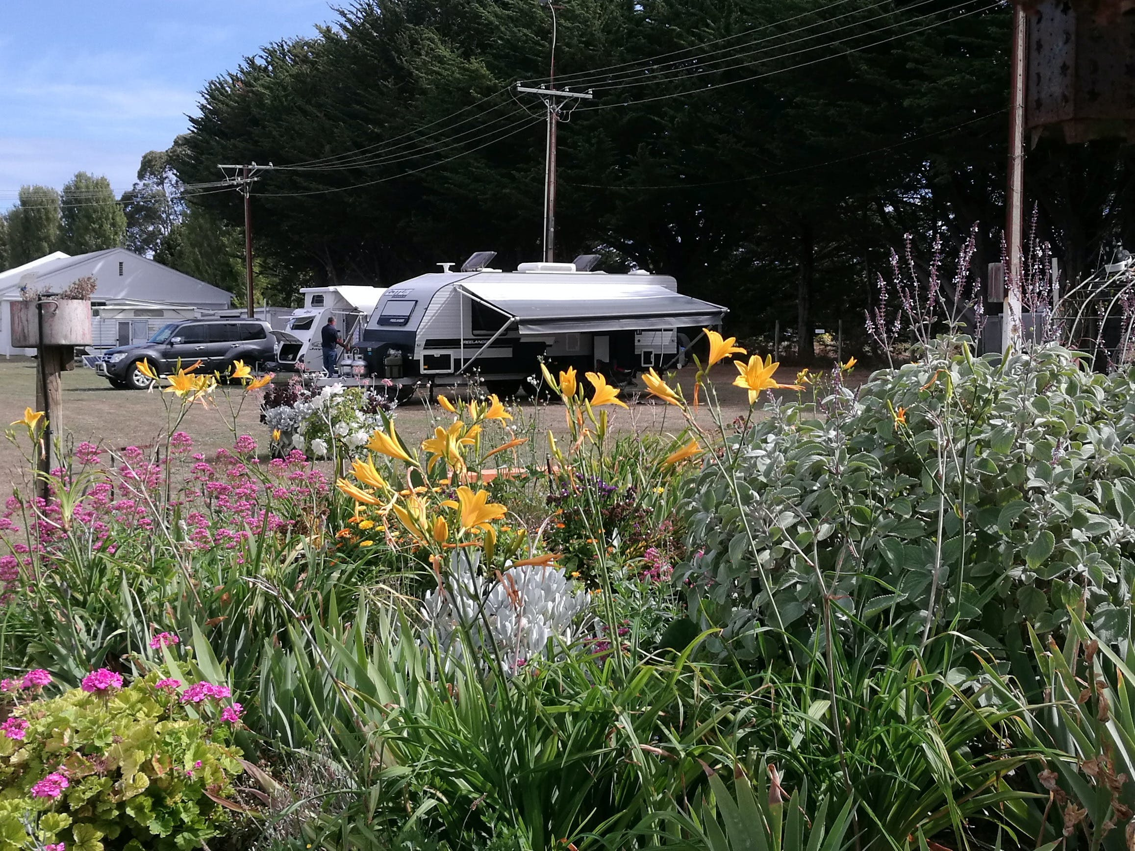 Millicent Showground RV Park - Lennox Head Accommodation