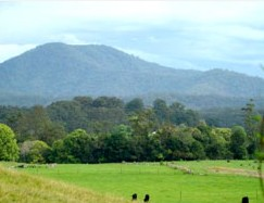Bellingen Farmstay - Lennox Head Accommodation