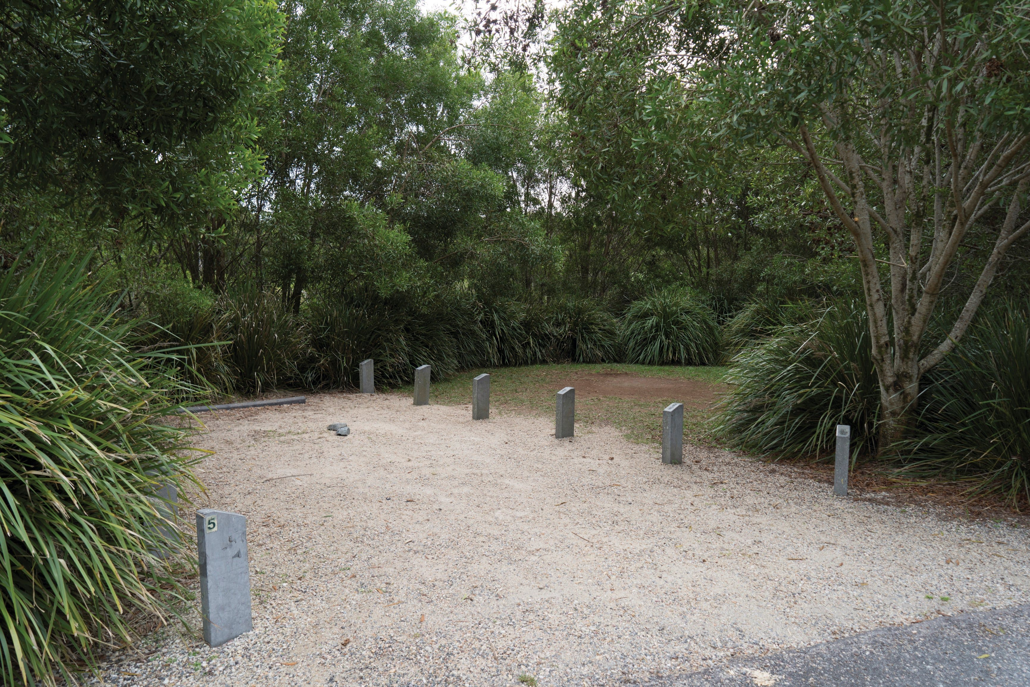 Springbrook National Park camping - Lennox Head Accommodation