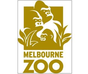 Melbourne Zoo - Lennox Head Accommodation