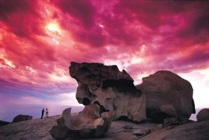 Kangaroo Island Adventure Tour 2 day/1 night - Lennox Head Accommodation