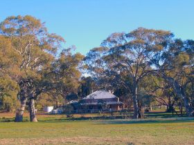 Old Wilpena Station - Lennox Head Accommodation