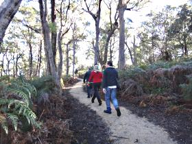 Bridport Walking Track - Lennox Head Accommodation
