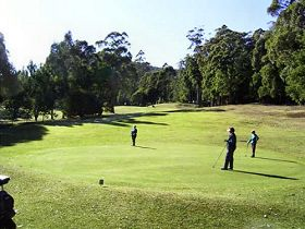 Sheffield Golf Course - Lennox Head Accommodation