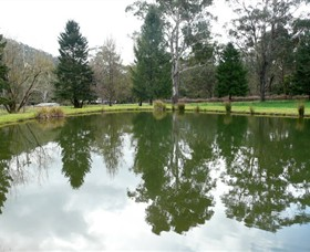 Mountain Fresh Trout and Salmon Farm - Lennox Head Accommodation