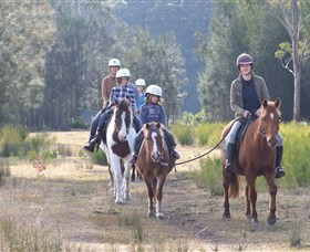 Horse Riding at Oaks Ranch and Country Club - Lennox Head Accommodation