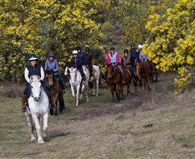 Burnelee Excursions on Horseback - Lennox Head Accommodation