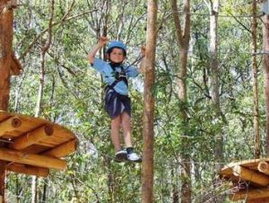 TreeTops Newcastle - Lennox Head Accommodation