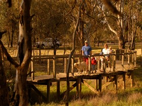 Loxton's Drives Walks and Trails - Lennox Head Accommodation