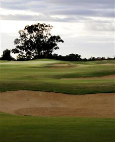 Black Bull Golf Club - Lennox Head Accommodation