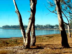 Lake Broadwater Conservation Park - Lennox Head Accommodation