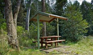 Devils Hole lookout walk and picnic area - Lennox Head Accommodation