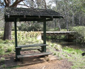 Barrington Tops State Forest - Lennox Head Accommodation