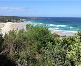 South Pacific Heathland Reserve - Lennox Head Accommodation