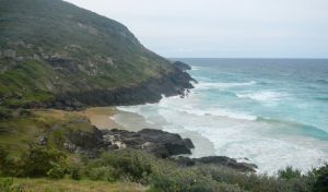 Connors walking track - Lennox Head Accommodation
