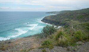 Korogoro walking track - Lennox Head Accommodation