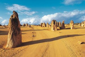 Pinnacles Desert Koalas and Sandboarding 4WD Day Tour from Perth - Lennox Head Accommodation