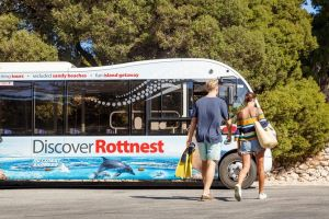 Rottnest Island Tour from Perth or Fremantle including Bus Tour - Lennox Head Accommodation