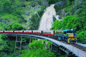 Full-Day Tour with Kuranda Scenic Railway Skyrail Rainforest Cableway and Hartley's Crocodile Adventures from Cairns - Lennox Head Accommodation