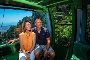 Skyrail Rainforest Cableway Day Trip from Palm Cove - Lennox Head Accommodation