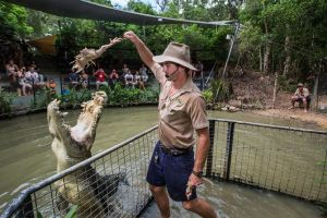 Hartley's Crocodile Adventures Day Trip from Cairns - Lennox Head Accommodation