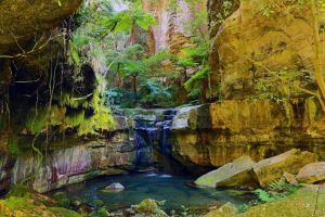 Glimpse of the Outback 5 Day Tour - Roma and Surrounds - Lennox Head Accommodation