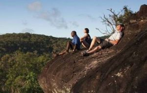 Cooktown Aboriginal Art Tours - Lennox Head Accommodation
