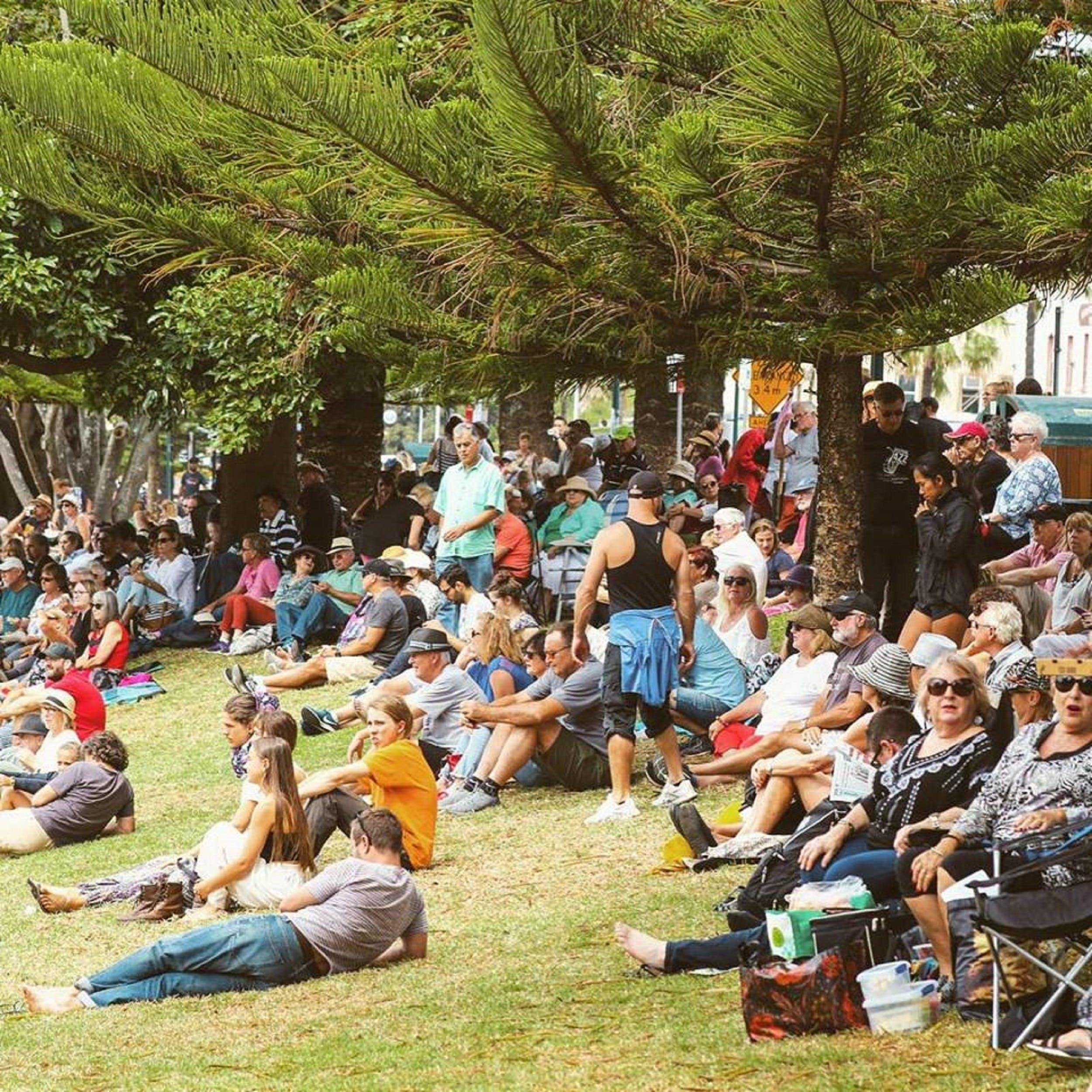 Music in the Park - Lennox Head Accommodation