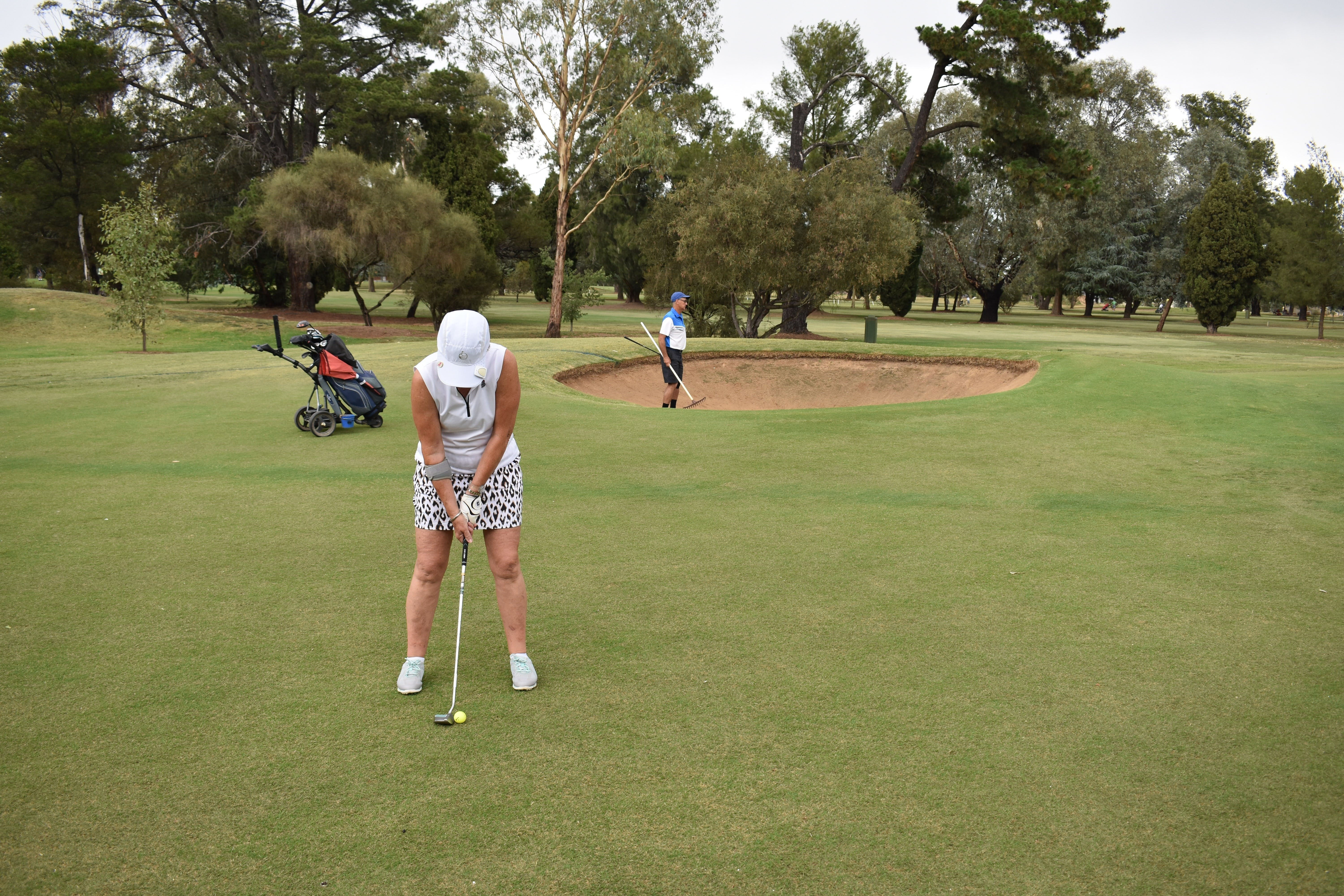 Nine and Dine Golf and Buffet Dinner with Seafood - Lennox Head Accommodation