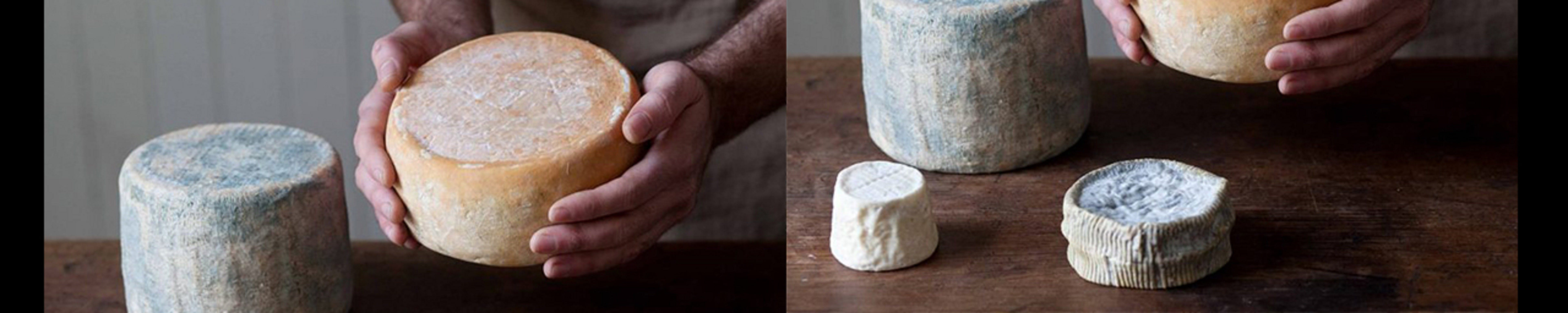 Cheese Making Basics Class - Lennox Head Accommodation