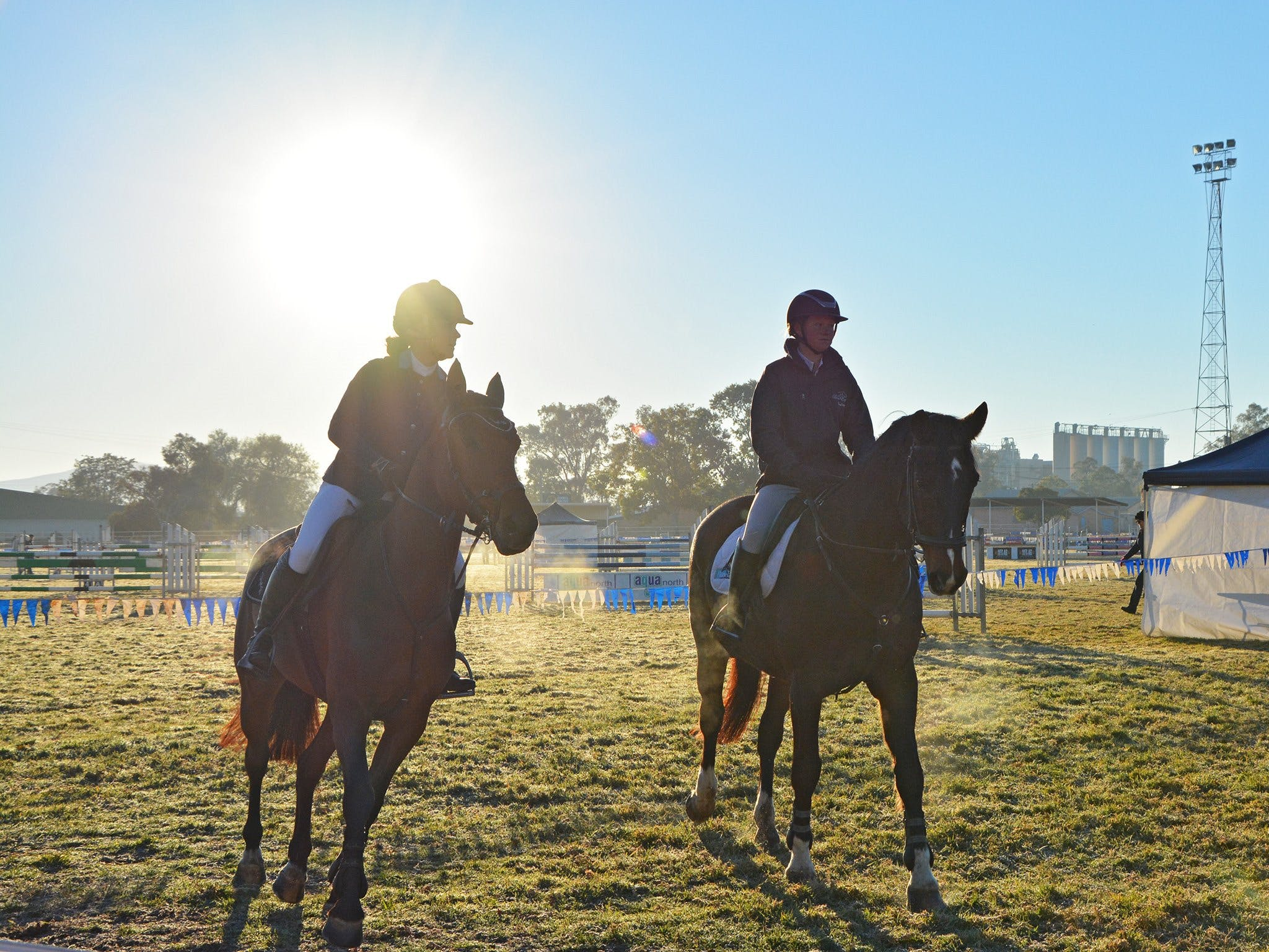 Gunnedah Showjumping Festival - Lennox Head Accommodation