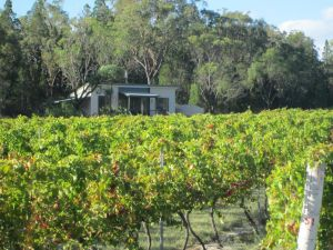 Just Red Wines Cabins - Lennox Head Accommodation