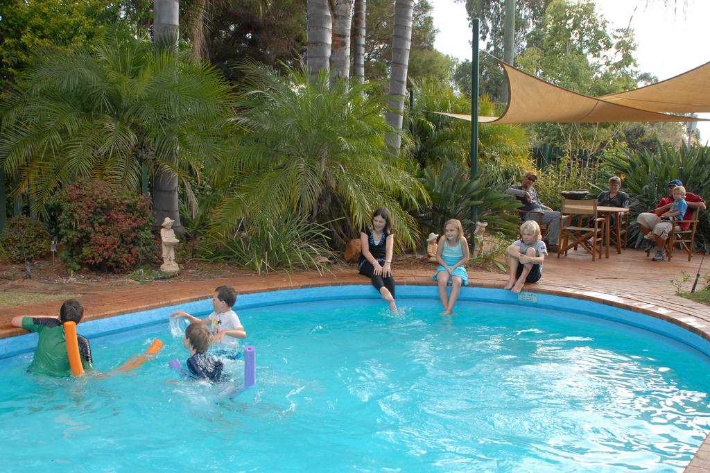 Kingaroy Holiday Park - Lennox Head Accommodation